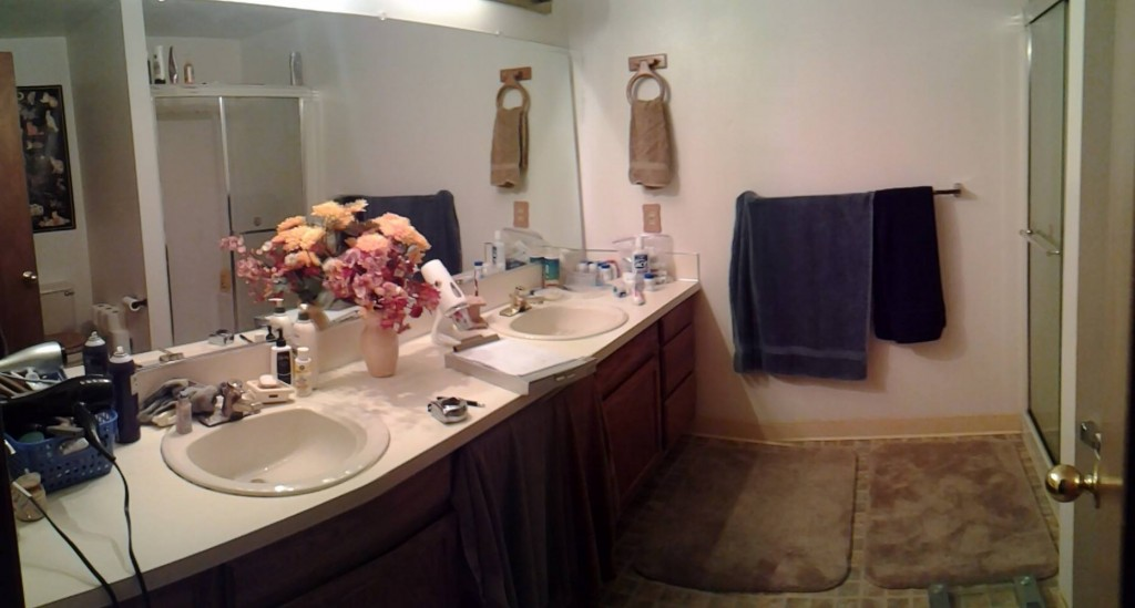 Tigard Bathroom Remodel Before Pic